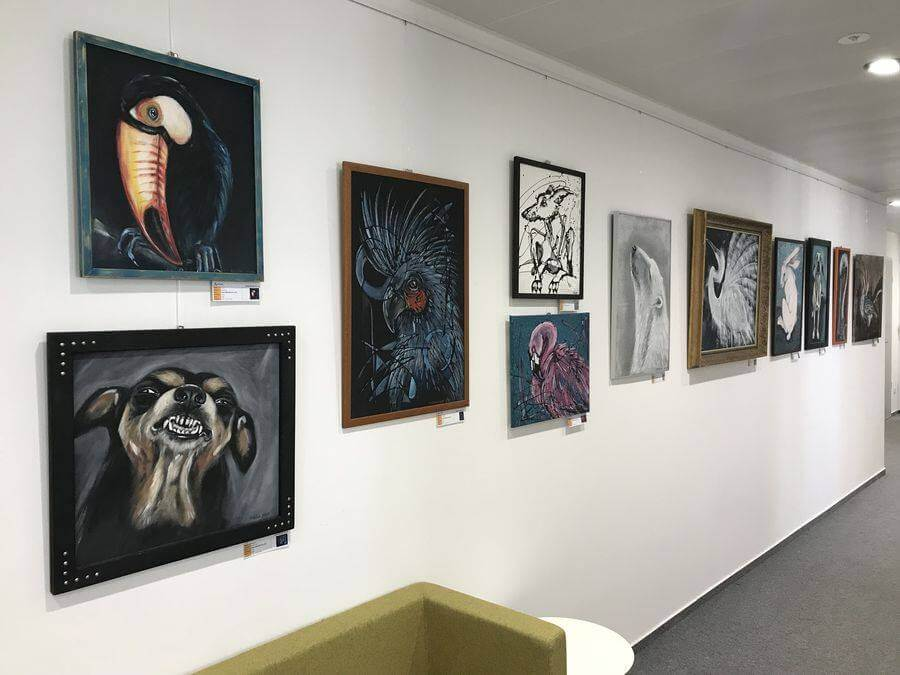 Exhibition of Petra Hřivnáčová in Slovakia Office Gallery Accace