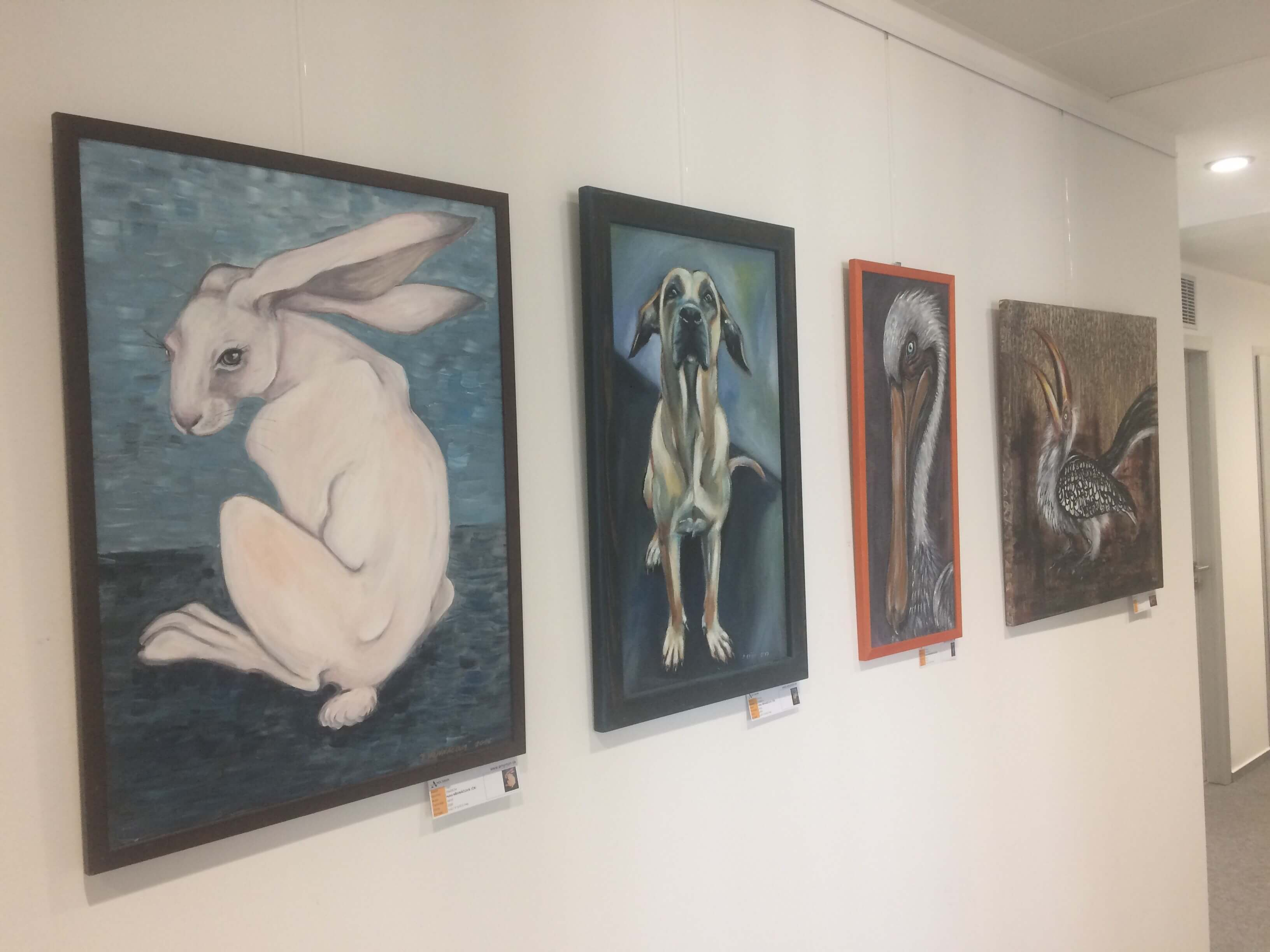 Exhibition of Petra Hřivnáčová in Slovakia Office Gallery Accace